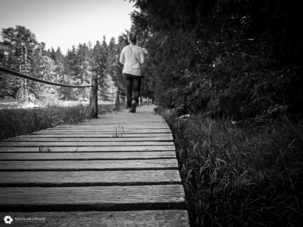 Promenade autour du lac de servieres