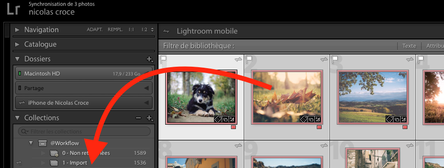 lightroom-deplacement-photos-entre-collections
